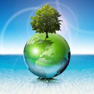 respect-de-l-environnement
